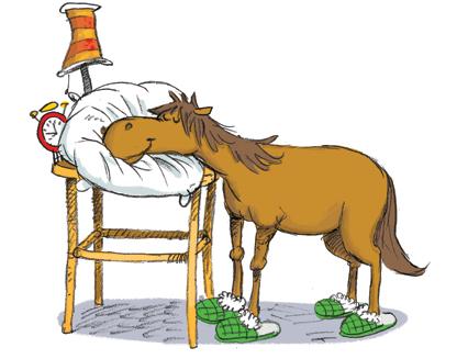 photo de cheval qui dort