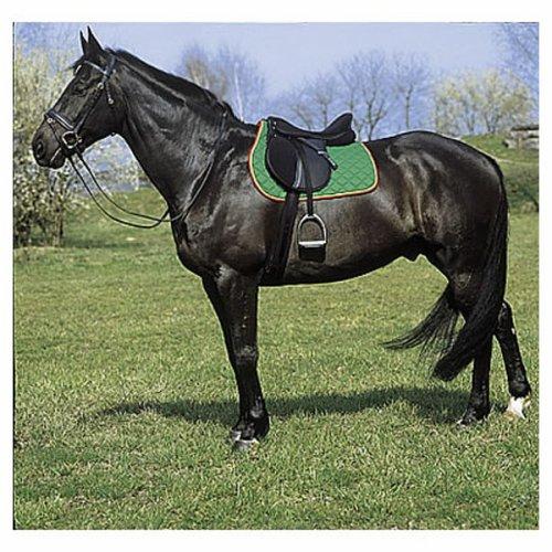 photo de cheval selle