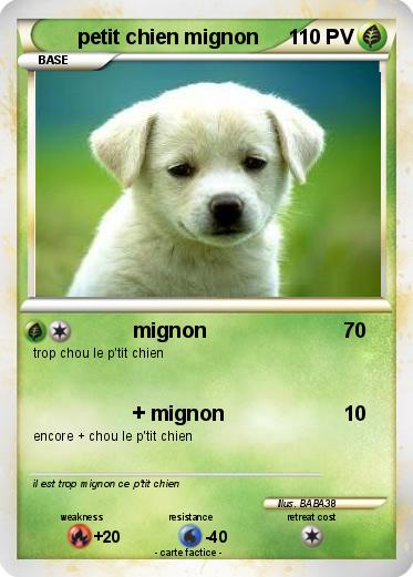 photo de chien mignon a imprimer