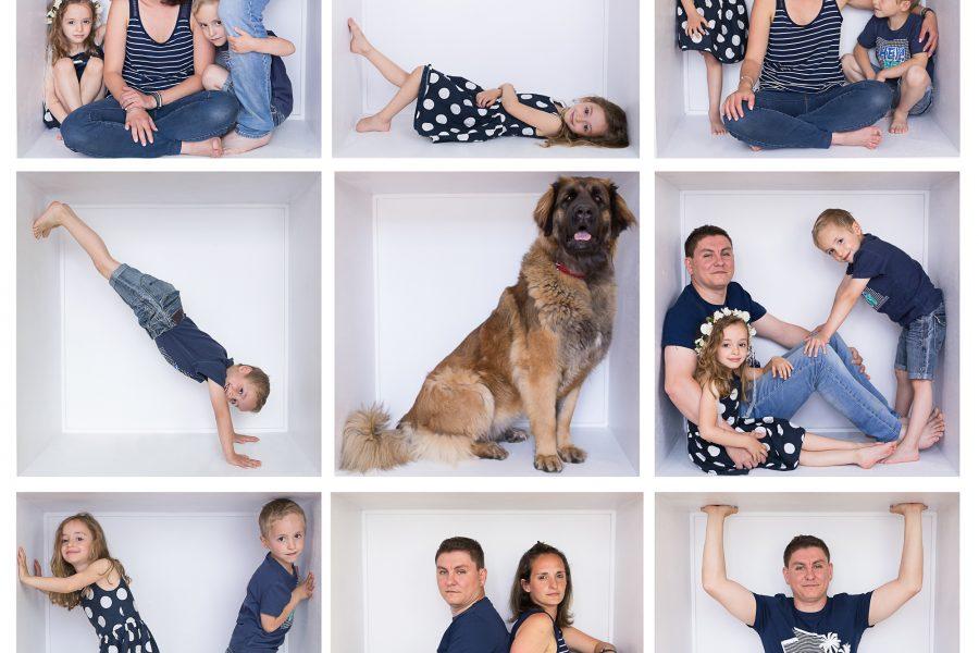 photo de famille box
